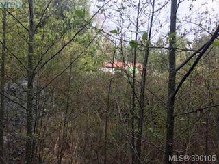 Photo 8: 5595 East Sooke Rd in SOOKE: Sk East Sooke Land for sale (Sooke)  : MLS®# 784096