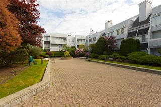 """Photo 18: 120 7751 MINORU Boulevard in Richmond: Brighouse South Condo for sale in """"CANTERBURY COURT"""" : MLS®# R2273101"""