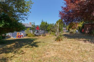 Photo 33: 3855 Seaton St in VICTORIA: SW Tillicum House for sale (Saanich West)  : MLS®# 793138