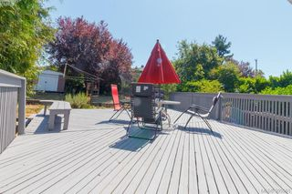 Photo 30: 3855 Seaton St in VICTORIA: SW Tillicum Single Family Detached for sale (Saanich West)  : MLS®# 793138