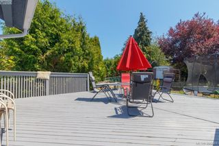 Photo 31: 3855 Seaton St in VICTORIA: SW Tillicum House for sale (Saanich West)  : MLS®# 793138