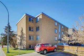 Photo 3: 202 1706 11 Avenue SW in Calgary: Sunalta Apartment for sale : MLS®# C4214439