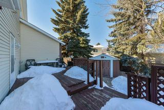 Photo 25: 12 GOEBEL Bay: Spruce Grove House for sale : MLS®# E4147474