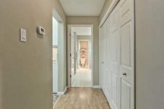 Photo 29: 202 14810 51 Avenue in Edmonton: Zone 14 Condo for sale : MLS®# E4185570