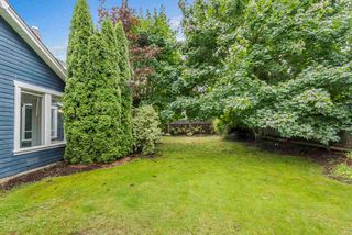 Photo 20: 10571 164 STREET in Surrey: Fraser Heights House for sale (North Surrey)  : MLS®# R2428089