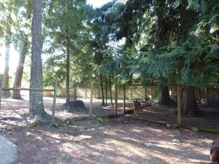 Photo 13: 1935 Morello Rd in : PQ Nanoose House for sale (Parksville/Qualicum)  : MLS®# 858333