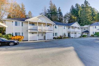 Photo 3: 24 20799 119 Avenue in Maple Ridge: Southwest Maple Ridge Townhouse for sale : MLS®# R2514814