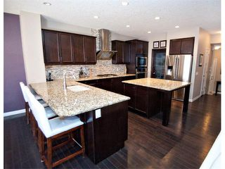 Photo 6: 40 CHAPARRAL VALLEY Green SE in Calgary: Chaparral Valley House for sale : MLS®# C4018294