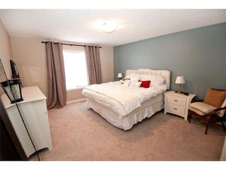 Photo 18: 40 CHAPARRAL VALLEY Green SE in Calgary: Chaparral Valley House for sale : MLS®# C4018294