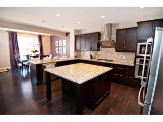 Photo 8: 40 CHAPARRAL VALLEY Green SE in Calgary: Chaparral Valley House for sale : MLS®# C4018294