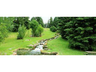 Photo 37: 1039 LAKE WAPTA Way SE in Calgary: Lake Bonavista House for sale : MLS®# C4037311