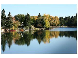 Photo 36: 1039 LAKE WAPTA Way SE in Calgary: Lake Bonavista House for sale : MLS®# C4037311