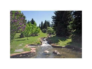 Photo 38: 1039 LAKE WAPTA Way SE in Calgary: Lake Bonavista House for sale : MLS®# C4037311