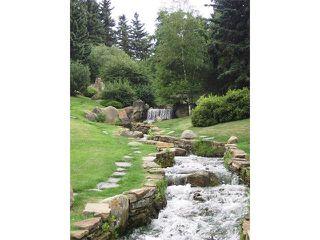 Photo 39: 1039 LAKE WAPTA Way SE in Calgary: Lake Bonavista House for sale : MLS®# C4037311
