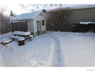Photo 15: 22 Carnarvan Road in WINNIPEG: St James Residential for sale (West Winnipeg)  : MLS®# 1600661