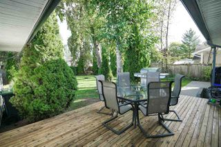 Photo 16: 26493 32 Avenue in Langley: Aldergrove Langley House for sale : MLS®# R2107398