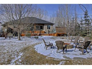 Photo 31: 36 Silvertip Gate: Rural Foothills M.D. House for sale : MLS®# C4102875