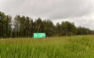 Main Photo: 7314 514 TWP RD Road: Rural Parkland County Rural Land/Vacant Lot for sale : MLS®# E4071134
