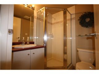 Photo 9: # 307 822 HOMER ST in Vancouver: Downtown VW Condo for sale (Vancouver West)  : MLS®# V952930