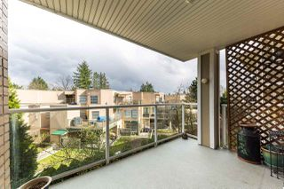 Photo 12: 306 22255 122 Avenue in Maple Ridge: West Central Condo for sale : MLS®# R2253203