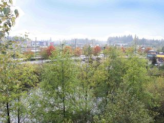 Photo 18: C409 8929 202 Street in Langley: Walnut Grove Condo for sale : MLS®# R2330776