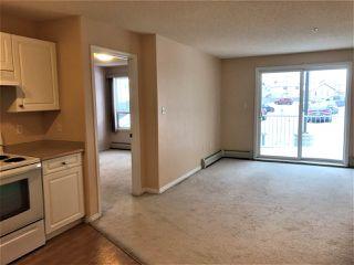 Photo 3: 118 155 EDWARDS Drive in Edmonton: Zone 53 Condo for sale : MLS®# E4141814