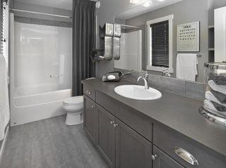 Photo 17: 12912 207 Street in Edmonton: Zone 59 House for sale : MLS®# E4144121