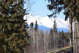 Photo 19: 14547 FAWN Road in Smithers: Smithers - Rural House for sale (Smithers And Area (Zone 54))  : MLS®# R2345894