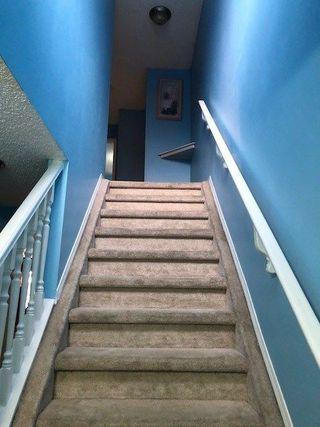 Photo 11: 30 14603 MILLER Boulevard in Edmonton: Zone 02 House Half Duplex for sale : MLS®# E4148495