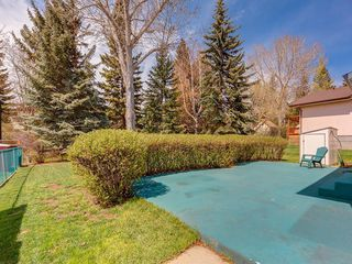 Photo 31: 5132 DALHAM Crescent NW in Calgary: Dalhousie Detached for sale : MLS®# C4244871