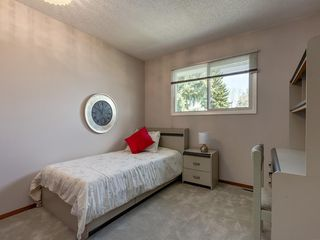 Photo 24: 5132 DALHAM Crescent NW in Calgary: Dalhousie Detached for sale : MLS®# C4244871