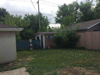Photo 15: 11423 51 Avenue NW in Edmonton: Zone 15 House for sale : MLS®# E4160554
