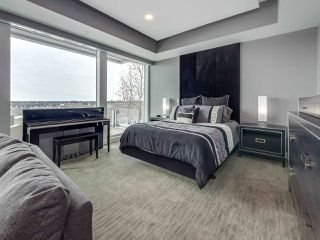 Photo 20: 8606 SASKATCHEWAN Drive in Edmonton: Zone 15 House for sale : MLS®# E4161195