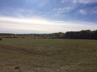 Photo 16: 134 320 acres Road North in Dauphin: RM of Dauphin Farm for sale (R30 - Dauphin and Area)  : MLS®# 1918190