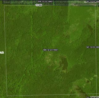 Photo 5: 134 320 acres Road North in Dauphin: RM of Dauphin Farm for sale (R30 - Dauphin and Area)  : MLS®# 1918190