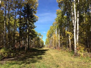 Photo 12: 134 320 acres Road North in Dauphin: RM of Dauphin Farm for sale (R30 - Dauphin and Area)  : MLS®# 1918190