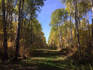 Photo 10: 134 320 acres Road North in Dauphin: RM of Dauphin Farm for sale (R30 - Dauphin and Area)  : MLS®# 1918190