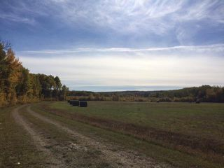 Photo 18: 134 320 acres Road North in Dauphin: RM of Dauphin Farm for sale (R30 - Dauphin and Area)  : MLS®# 1918190