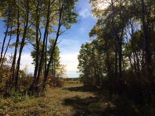 Photo 9: 134 320 acres Road North in Dauphin: RM of Dauphin Farm for sale (R30 - Dauphin and Area)  : MLS®# 1918190