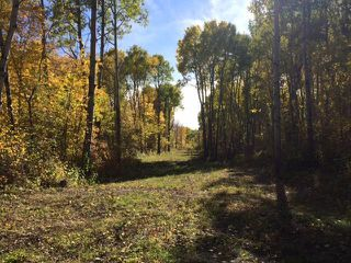 Photo 11: 134 320 acres Road North in Dauphin: RM of Dauphin Farm for sale (R30 - Dauphin and Area)  : MLS®# 1918190