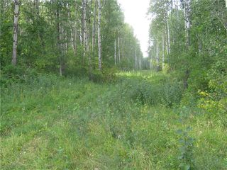 Photo 14: 134 320 acres Road North in Dauphin: RM of Dauphin Farm for sale (R30 - Dauphin and Area)  : MLS®# 1918190