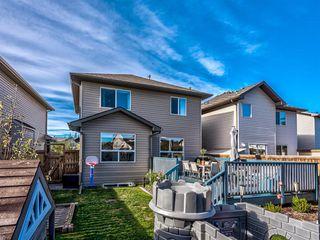 Photo 47: 934 Cranston Drive SE in Calgary: Cranston Detached for sale : MLS®# A1038805