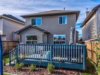 Photo 48: 934 Cranston Drive SE in Calgary: Cranston Detached for sale : MLS®# A1038805