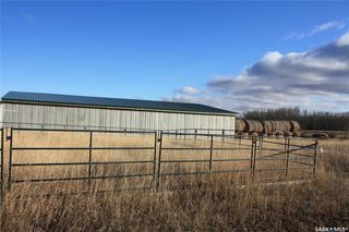 Photo 14: Hoot'N Holler Ranch in Great Bend: Farm for sale (Great Bend Rm No. 405)  : MLS®# SK830830