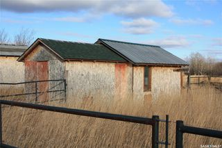 Photo 16: Hoot'N Holler Ranch in Great Bend: Farm for sale (Great Bend Rm No. 405)  : MLS®# SK830830