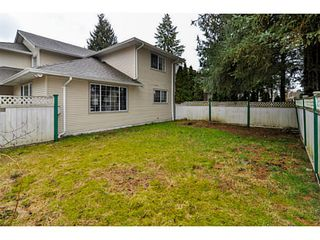 Photo 14: 22802 127TH Avenue in Maple Ridge: East Central House for sale : MLS®# V1048412