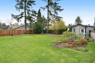 Photo 17: 4427 198B Street in Langley: Brookswood Langley House for sale : MLS®# R2120893