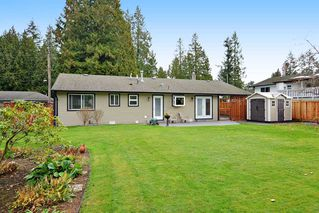 Photo 19: 4427 198B Street in Langley: Brookswood Langley House for sale : MLS®# R2120893