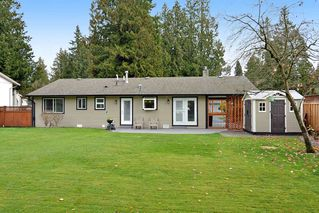 Photo 16: 4427 198B Street in Langley: Brookswood Langley House for sale : MLS®# R2120893