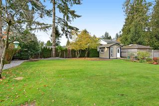 Photo 18: 4427 198B Street in Langley: Brookswood Langley House for sale : MLS®# R2120893